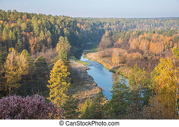 autumn morning on the river wiev from above
