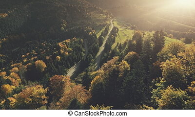 Autumn mountain dense forest landscape aerial view - Autumn...