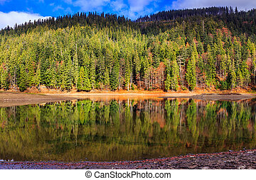 Autumn Mountain lake in coniferous forest