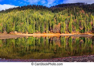 Autumn Mountain lake in coniferous forest - Mountain lake...