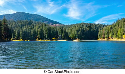 Autumn Mountain Lake with Colorful Trees in the Forest
