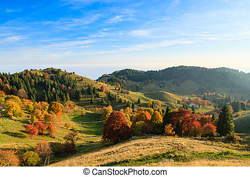 Autumn mountain landscape
