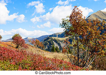 Autumn mountain landscape in the French Alps