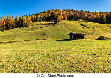 Autumn mountain landscape with traditional alpine hut and larch trees. Austrian Alps, Tyrol, Austria.