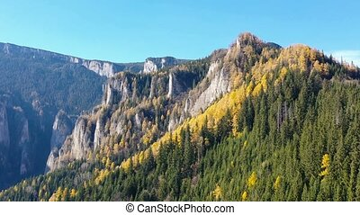Autumn mountain landscape with yellow larch tree and rock...