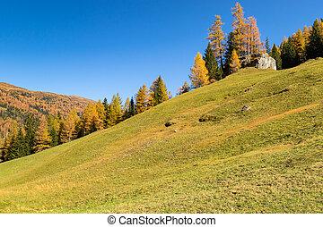 Autumn mountain landscape with yellow larch trees. Austrian Alps, Tyrol, Austria.