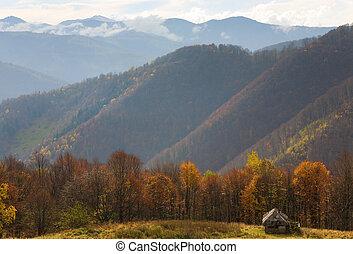autumn mountain view - Carpathian Mountains (Ukraine) autumn...
