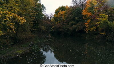 autumn nature by the river.
