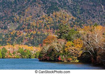 Autumn nature in yuno lake