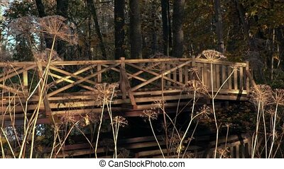 Autumn nature view with wooden bridge