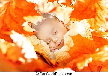 Autumn Newborn Baby Sleep, New Born Kid Sleeping in Yellow Fall Leaves, Child one month old