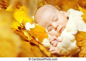 Autumn newborn baby sleeping in maple leaves. Close up portrait.