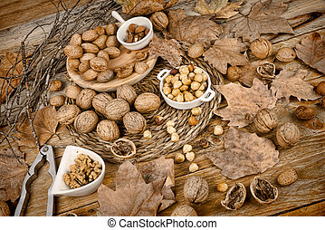 Autumn nuts