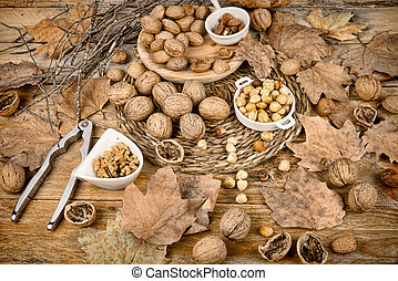 Assortment of nuts, an autumn produce still llife
