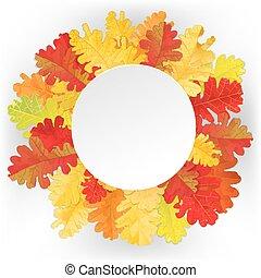 Autumn oak leaves