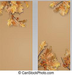 Autumn oak leaves branch