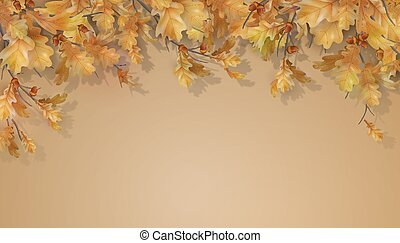 Autumn oak leaves branch