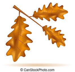 autumn oak leaves vector illustration