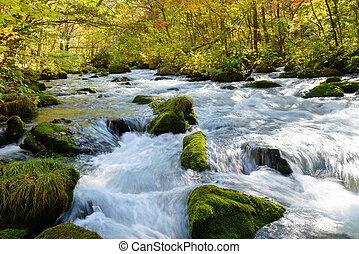 Autumn of Oirase Gorge in Aomori Pr - The first 14 km of the...