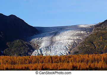 Exit glacier in Seward Alaska with fall colors