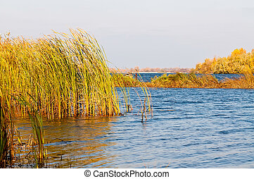 Autumn on the Dnieper River