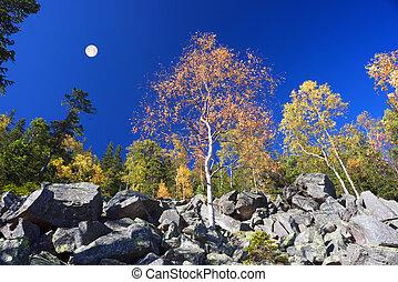 autumn on the rocky mountains