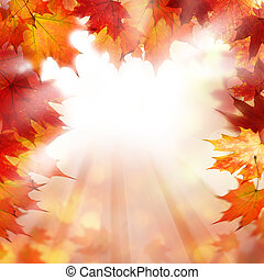 Autumn Orange Border Background with Fall Maple Leaves and White Copyspace