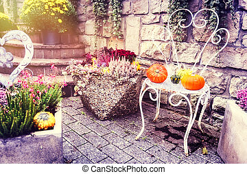 Autumn outdoor decoration with colorful pumpkins