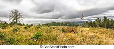 Autumn panorama in carpathian hills