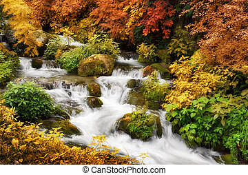 Colorful autumn scenery with a mountain creek framed by multi-colored greenery