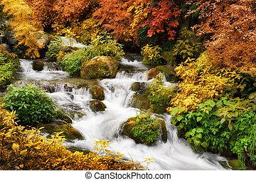 Autumn paradise - Colorful autumn scenery with a mountain ...