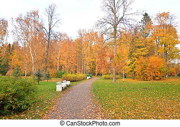 autumn., parc, chemin