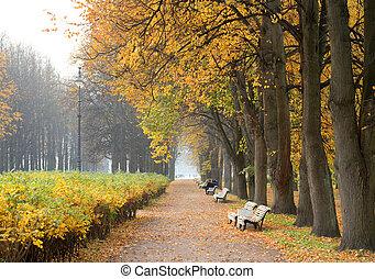 autumn., parc, ruelle