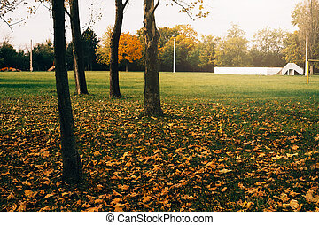 Autumn park in the city