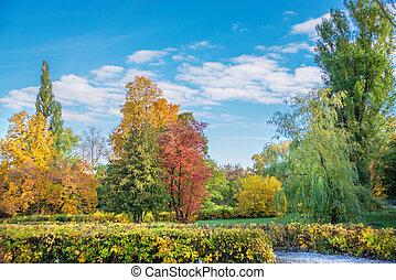 Autumn park on a bright sunny day