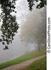 Autumn park on a misty morning.