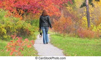 autumn pass