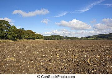 autumn plowed field