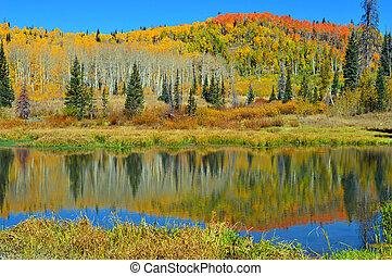 Autumn Pond