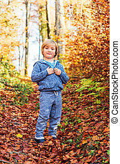 Autumn portrait of a cute little boy in forest, wearing blue knitted jacket and joggers
