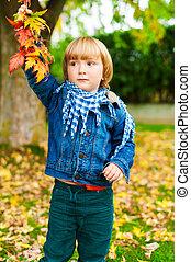 Autumn portrait of a cute little boy