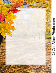 Autumn postcard with leaves