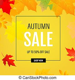 Autumn Poster With Color Leaves
