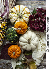Autumn Pumpkin Flatlay - A flatlay view of white, orange and...