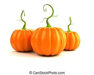 autumn - pumpkins