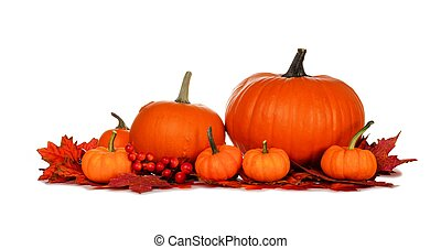 Autumn pumpkins and fall leaves isolated on white