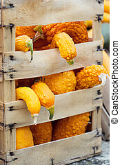 Autumn pumpkins in a box