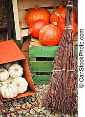 Autumn pumpkins in a box
