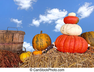 autumn pumpkins on hay bale
