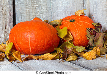 Autumn pumpkins with autumn leaves on white wooden background.
